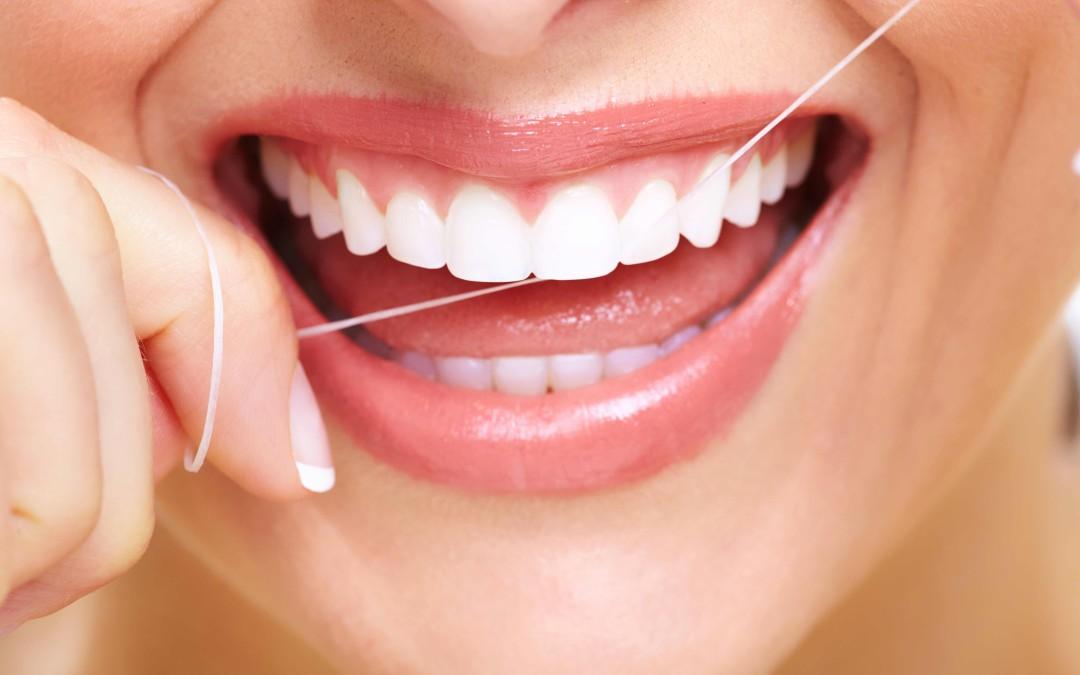 Teeth 101